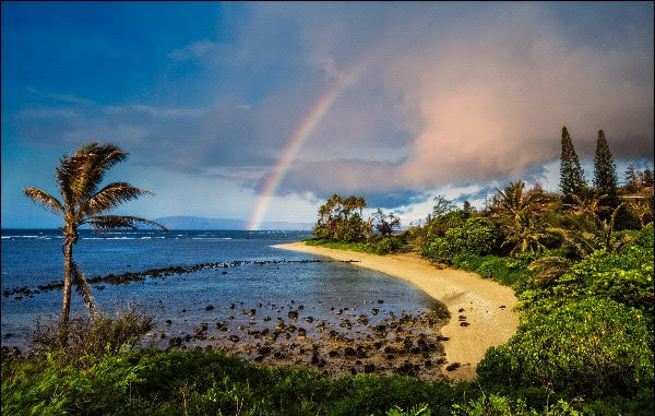I wrote my Grief Story on Kauai, now you can write with me